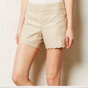 ANTHROPOLOGIE Elevenses Khaki Eyelet Shorts Size 2